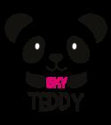 logo-sky-teddy